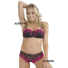 Women's Bra Setes  1/2 Cup Sexy Bra Underwire Push Up Cup Fashion Embroidery Bra Brief Sets Lace Panties 32B 34B 36B 38B