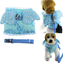 Gomaomi Blue Angel Wing Walking Pet Dog Collar Harness with Leash Cat Accessory Puppy Clothes(China)