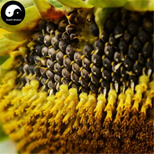 Buy Helianthus Annus Fruit Seeds 300pcs Plant Chinese Grain Sunflower Grow Herb Food Girasol