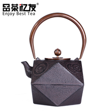 1250ml Chinese Kung Fu Tea Set Cast Iron Teapot Enamel Good Health Gift Japanese Style Tea Kettle(China)
