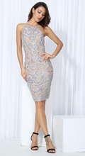 Silver Party Dress, Nude Mesh Lining, Sleeveless, Knee Length, Night Out, Open Back