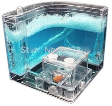 AntWorks Space-Age Ant Farm Gel Workshop Nature Kids Educational Maze School Project 3D Science Kit Toy Watch Live Ants World(China)