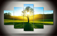 2017  Wall Art HD Canvas Print 5 Pieces Morning Sunshine Green Tree Grassland Scenery Paintings  Home Decoration