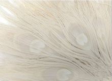 10pc Beautiful Natural  Bleached Ivory Peacock Feather Wedding Decoration, Crafts 10-12'' (25-30cm) AE03746