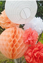 6PCS Mixed Peach Coral White Paper Lantern Paper Honeycomb Balls Paper Pompoms Flower Themed Party Hanging Decoration Favour
