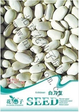 White beans and crisp flesh potted seeds sprawling ~ ~ original packaging beans three B063