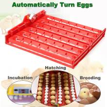 60 Eggs Plastic Quail Poultry Incubator Turner Tray With a PCB Turning Motor For Farm Animals Chicken Incubation Tools Equipment(China)