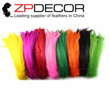 ZPDECOR 100pcs/bag 25-30cm(10-12ich)  Hand Sorting Wholease Beautiful Decolorizing Mixed Color Rooster Tail Feathers For Wedding