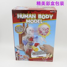 4D MASTER GYMNASTICS ROBOT human body block model Cartoon horror body toy for prank.education toy for kids