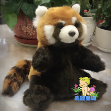 Cute Simulation Red Panda Plush Doll Toys Appease Baby Puppets Toy(China)