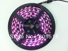 [Seven Neon]Free DHL shipping 10meters 5050 IP65 waterproof 60leds/meter built-in IC purple light led smd strip,led meteor strip(China)