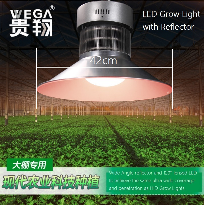 42cm LED Grow Lights with Reflector and Lens, Full Spectrum<br><br>Aliexpress