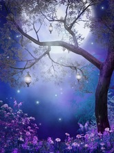 10x10FT Tree Branch Lanterns Night Moon Sky Stars Butterfly Flowers Custom Backgrounds Photo Studio Backdrops Vinyl 8x8 10x12(China)