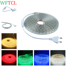 WFTCL AC220 Luz de tiras LED strip light SMD5050 60leds/M IP67 Waterproof Led Tape lights 1M 2M 5M 10M 15M 20M LED stripe light
