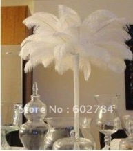 Wholesale 100pcs/lot 14-16 inches 35-40cm White ostrich drab feather ostrich plumes Free Shipping