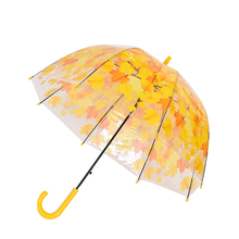Rainny Sunny Umbrella Cute Clear Leaves Cage Umbrella Transparent Parasol Umbrella For Women 4 Colors Best Selling