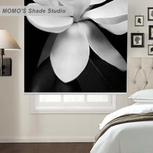 MOMO Thermal Insulated Blackout Fabric Custom Painting Window Curtains Roller Shades Blinds,PRB set377-382