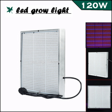 Newest Full Spectrum High Power LED Grow Light 120W 1131Red:234Blue  LED lamp for Flowering Plant and Hydroponics System