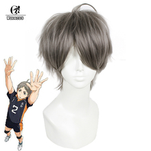ROLECOS Japanese Anime Haikyuu Cosplay Headwear Sugawara Koushi 25cm Men Cosplay Short Grey Hair Cosplay Synthetic Hair(China)