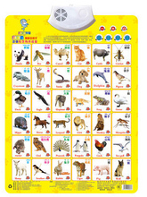 Animal  Baby bump sound wall charts Early childhood sound wall charts Enlightenment In both Chinese and English pronunciation