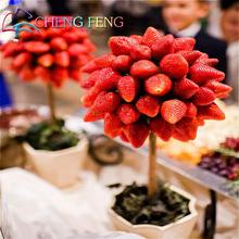 11.11 Promotions Direct Selling 100pcs Strawberry Seeds Indoor Plants Tree Rare Seed Fruit Seeds Home Garden Diy For Bonsai Gift(China)