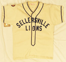 Sellersville Lions Baseball Jersey All Embroidered Custom Jerseys(China)