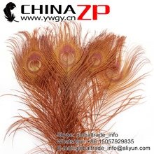 Manufacturer in CHINAZP Factory 100pcs/lot Good Quality Full Eye Dyed Brown Peacock tail Feathers(China)