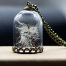 Vintage Antique Bronze Chain Creative Charming Wish On A Glass Bottle Wishing Bottle Necklace Jewelry Romantic Dandelion(China)