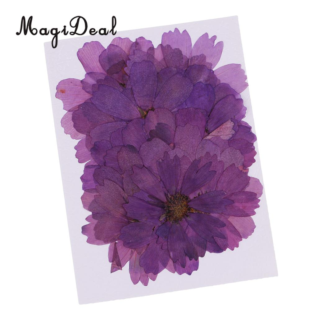 20 Pcs Dried Pressed Purple Flowers DIY Jewelry Resin Casting Materials