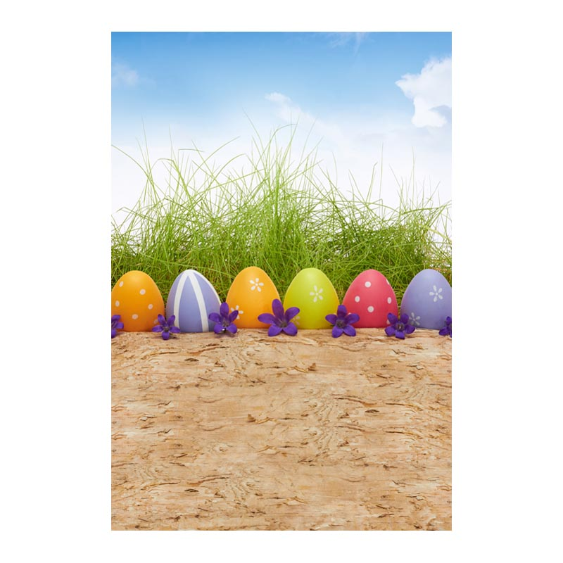 Thin fabric computer Printed photography background Easter colorful eggs with wood photo backdrop for Studio 5X7ft GE-084<br><br>Aliexpress