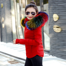 2017 Fashion Womens Winter Jackets Coats Parkas Women Outerwear Winter Jacket Multi-color large Artificial fur collar