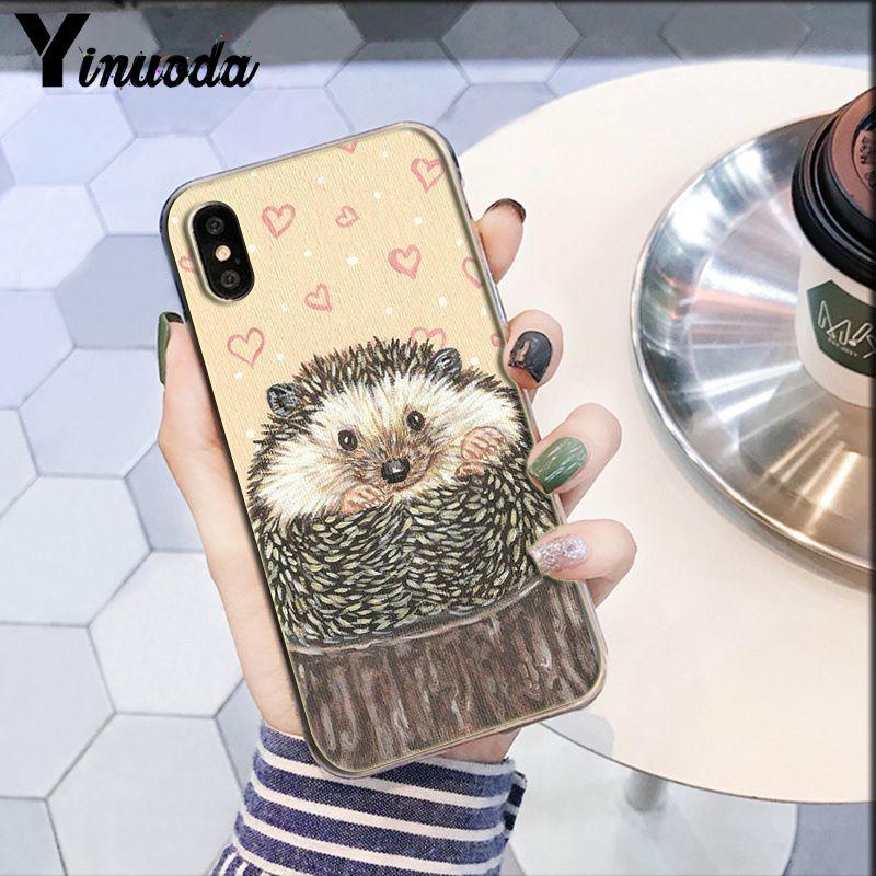 Darcy hedgehog Sheep