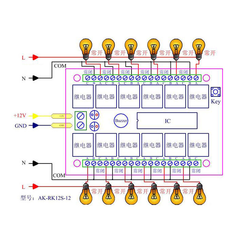 12CH 12V Remote Control Switch Relay Wireless Remote Switch 12 Channel Relay Module 12V 315MHz 433MHz Learn Code (4)