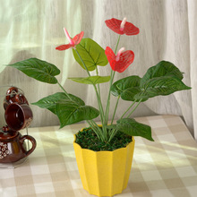 vase/ Wholesale plastic flower green landscape simulation of Anthurium plants flowers placed outdoor potted flower quality