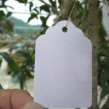 5*7cm 100pcs Waterproof Strip Line Gardening Labels Signs Plant Hanging Tags Grey