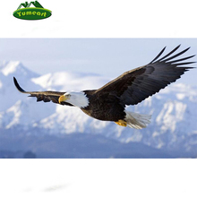 2015 Rushed DIY 3D Diamond Painting Eagle in sky Soar Tenacity Mosaic Embroidery home decoration fabric resin hobby craft Canvas(China)
