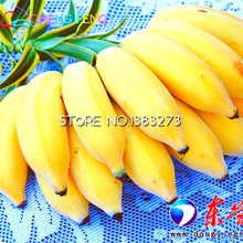 30/bag Banana tree Seeds Fruit Seed Rare Small Mini Hainan Chinese Banana Seeds Musa Seed Dwarf  Basjoo Outdoor Garden * plants