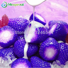 100PCS Natural Sweet Blue Strawberry Seeds Nutritious Delicious Plant Seed free shipping
