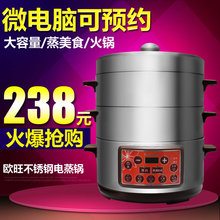 Dz208e micro computer belt stainless steel food steamer double layer large capacity electric food steamer