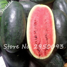 Special Offer! 20 PCS Giant Watermelon Seeds Black Tyrant King Super Sweet Watermelon Organic Fruit seeds Plant for Home Garden(China)