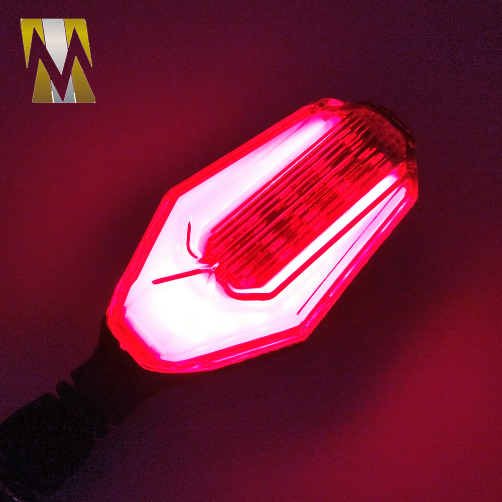 Universal Turning Signal Light (30)