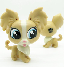 Original 1pc LPS quality cute toys Lovely Pet shop animal yellow Chihuahua puppy dog action figure littlest doll