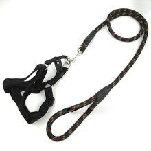 Collar Leashes Harness Set Pet Leash Dog Leads Adjustable Safety Walking Outing Rope Puppy Harness Chest Strap twill round rope(China)