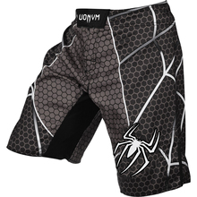 2017 HOT Fierce MMA Training Breathable Protection Muay Thai Boxing Shorts Fight Kickboxing Mma Short Pretorian Boxing Trunks(China)