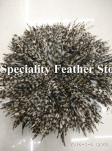 Free shipping 1000pcs 10-15cm natural color grizzly stripe chicken rooster plumage feathers for jewelry making bulk sale
