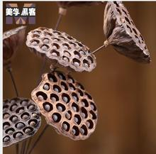 10pcs Europe type High-grade dry flower Super-large full seed metal flower stem dry lotus natural dry home decoration wholeasale