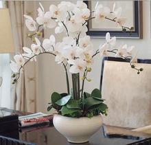 orchid Phalaenopsis real touch  flower with leaves artificial orchids  arrangement DIY arrange flower no vase