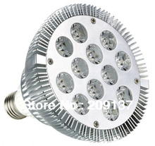 Hot sale E27 PAR38 par30 12X2W 24W dimmable LED Spotlight Light Bulb Lamp AC 85-265V warm white/cool white DHL free shipping(China)