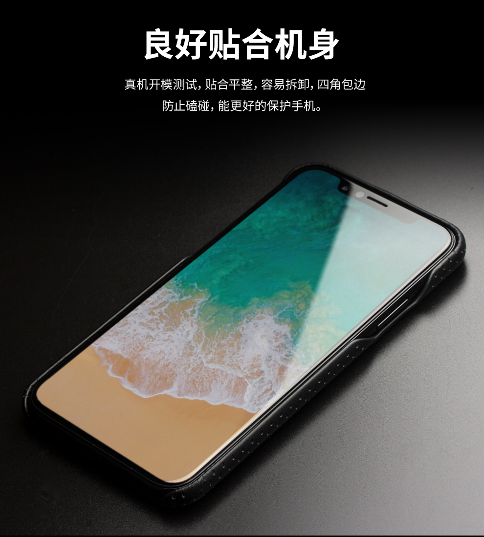 for iPhone X case Luxury (10)