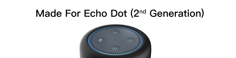 Portable Speaker for Echo 1